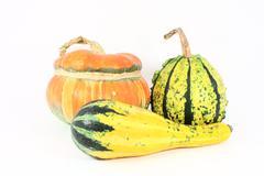 Three decorative gourds - stock photo