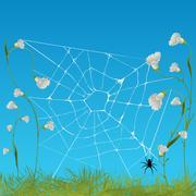 Web spider - stock illustration
