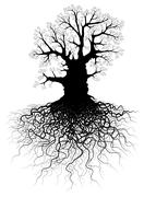 tree with roots - stock illustration