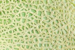 Close up of cantaloupe melon peel Stock Photos