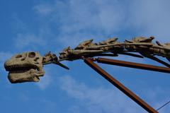 A large extinct brachiosaurus - brachiosaurus altithorax Stock Photos