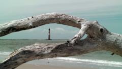 Drift wood gull fly lighthouse Stock Footage