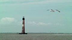 Gull fly slow mo lighthouse Stock Footage