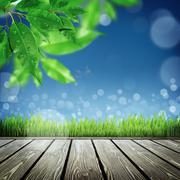 Stock Illustration of Spring nature background with grass