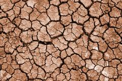 cleft on dried earth - stock photo