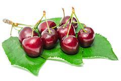 dark vinous ripe sweet cherry juicy tasty berry - stock photo