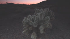 Southwest desert landscape 06 Stock Footage