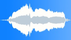 Cat meow sound Sound Effect