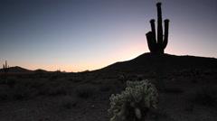 Desert Southwest Landscape 02 Stock Footage