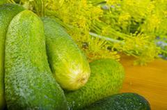 Polish garlic cucumbers (ingredients) - stock photo