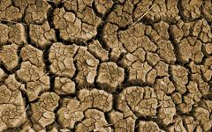 Clefts on dried soil Stock Photos