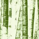 Stock Illustration of bamboo grunge