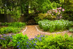 colorful garden at cylburn arboretum, baltimore, maryland. - stock photo
