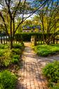 Stock Photo of path through a garden at cylburn arboretum, baltimore, maryland.