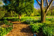 Stock Photo of path through garden at cylburn arboretum, baltimore, maryland.