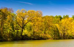 spring color along lake roland at robert e. lee memorial park in baltimore, m - stock photo