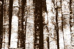 tree trunk grunge - stock illustration