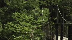 Suspension bridge, color graded 4K (3840x2160) Stock Footage