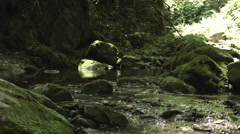 low position stream shot, color-graded 4K (3840x2160) - stock footage