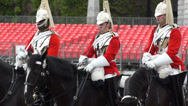 Stock Video Footage of London the Queen's Royal Horse guards standing in formation