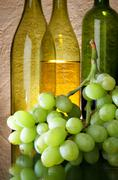 Grapes and wine bottles Stock Photos