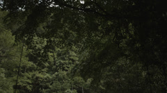 Suspension bridge tilt, non color graded Full HD (1920x1080) Stock Footage