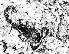 Grunge scorpion Stock Illustration