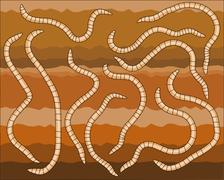 worms - stock illustration