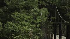 Suspension bridge, non color-graded 4K (3840x2160) Stock Footage