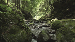 Beautiful stream, old rocks 4 color-gradedFull HD (1920x1080) Stock Footage