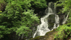 Torc waterfall in the Killarney National Park Stock Footage