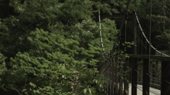 Suspension bridge, non color-graded Full HD 1920x1080 Stock Footage