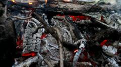 Bonfire. Kuivat polttopuut ja oksat polttaa tulessa. Arkistovideo