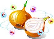 Stock Illustration of Onion with Vitamins Orbiting