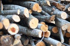 Alder firewood stacked Stock Photos