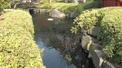 Beautiful Garden from Sensō-ji Temple in Tokyo Stock Footage