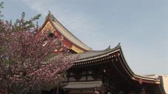 Sensō-ji Temple in Tokyo Stock Footage