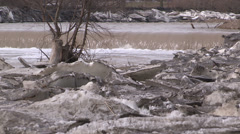 Toronto ice jam in spring on humber river at old mill Stock Footage