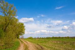 Rural road in steppe Stock Photos