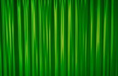 Green Curtain - stock illustration