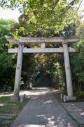Torii Gate At Hikawa Shrine Stock Photos