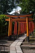 Torii gates at Nezu shrine in Nezu - stock photo