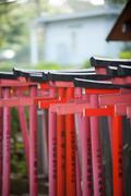 Torii Gates At Nezu Shrine Stock Photos
