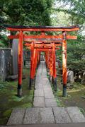Torii Gates At Nezu Shrine - stock photo