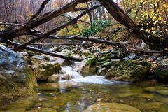 Mountain brook Stock Photos