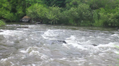River in deep forest - stock footage