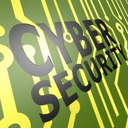 Pcb board with cyber security Stock Illustration