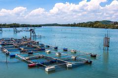 Stock Photo of cage aquaculture farming, thailand