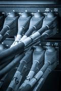 Stock Photo of network hub and patch cables