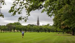 Green lawn plum trees at Meadows park, Edinburgh - stock photo